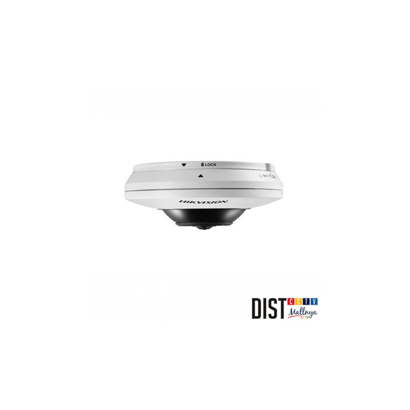 CCTV CAMERA HIKVISION DS-2CD2942F-IW